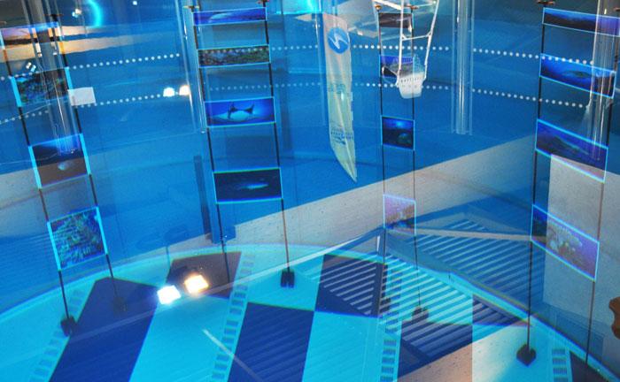 Avis piscine boussy saint antoine clinic - Piscine pierre de coubertin saint denis ...